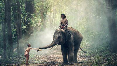 Thématiser son voyage sur mesure en Thaïlande selon ses propres envies