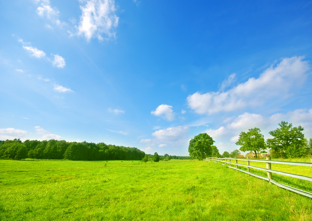 acheter un terrain constructible